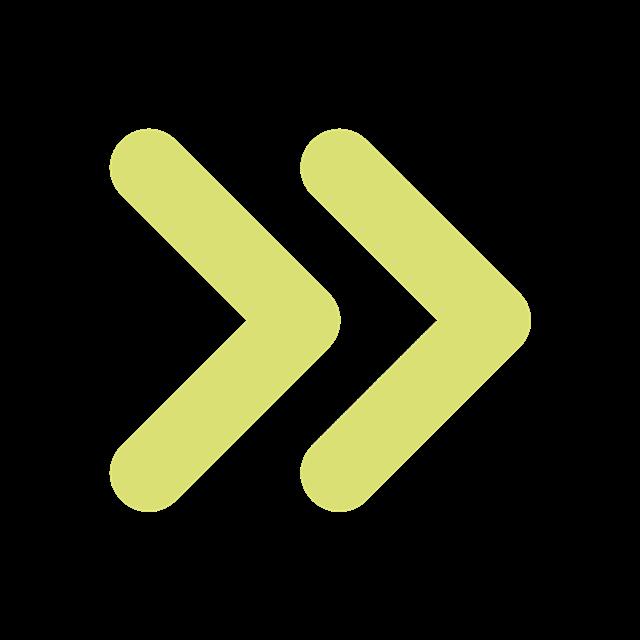 黄色快进icon