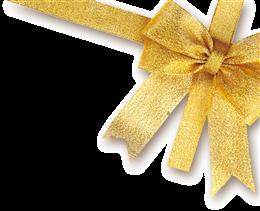 礼盒装饰花带子图片