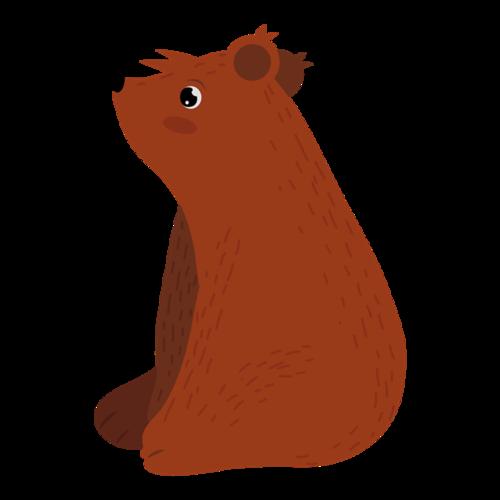 可爱的棕色小熊