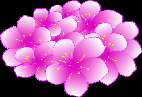 樱花花团装饰