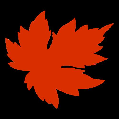 秋季枫叶免抠图片