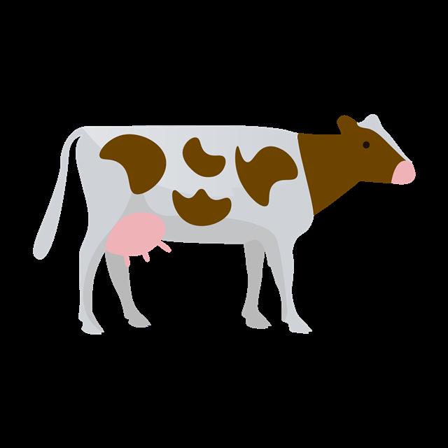 奶牛卡通图片