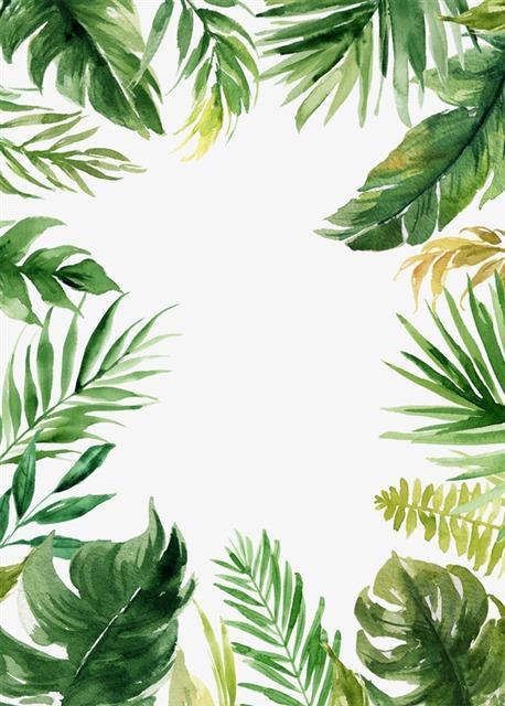 INS风植物手绘背景图片