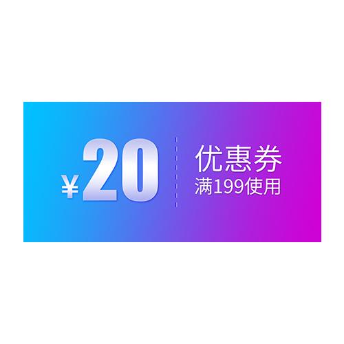 双十二优惠劵标签