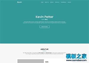 技术开发者博客网站模板