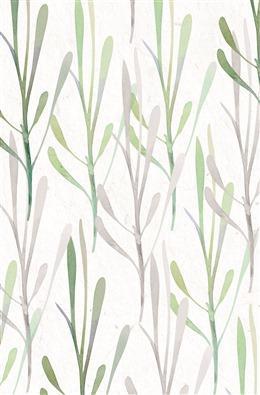 森系植物插画背景图片