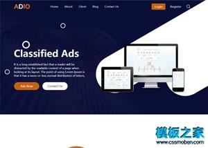 数字广告推广公司网站整站模板