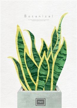热带植物挂画