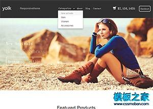网上商城购物网站模板
