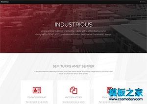 前端框架skin网站模板