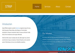 响应式HTML5网站模板