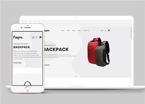 包包线上购物平台网站模板