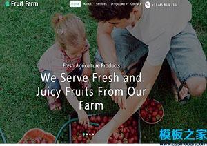 水果采摘农家乐引导页模板
