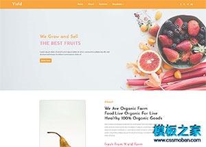 新鲜水果批发加盟店网站模板