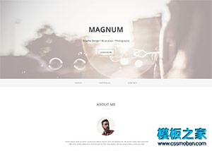 设计师web简历网站模板