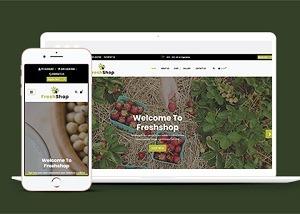 健康农产品销售网站模板