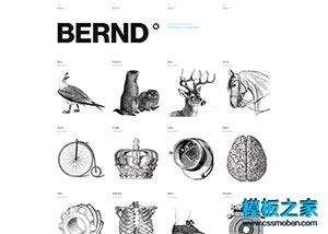 品牌策划设计公司网站