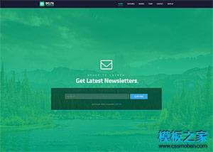 插画UI设计师网站模板