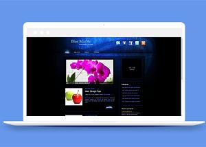 企业团队宣传介绍网站模板