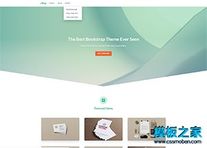eshop软件开发公司html5模板