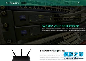 扁平化主机host服务提供商网站模板