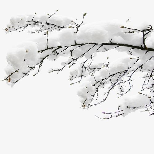 雪花落满枝头矢量图