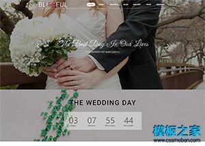 WEDDING婚纱照展示网站模板