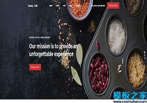 引导式企业宣传官方网站模板