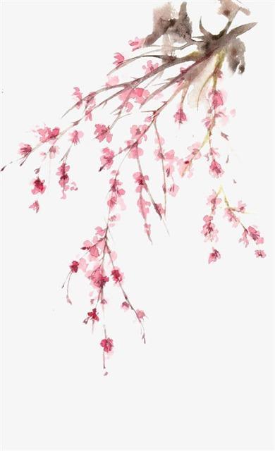 水墨红梅手绘