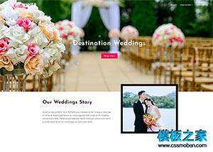婚礼请柬设计网站模板