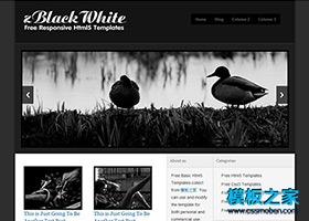 动物HTML5网站模板