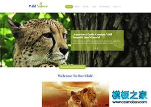 野生动物园官网企业模板