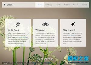 flash动画网页设计模板