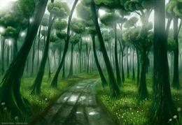绿色森林护眼壁纸