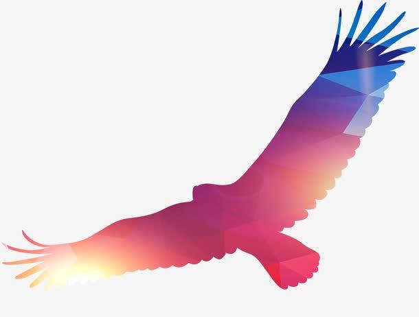 展翅高飞雄鹰图片