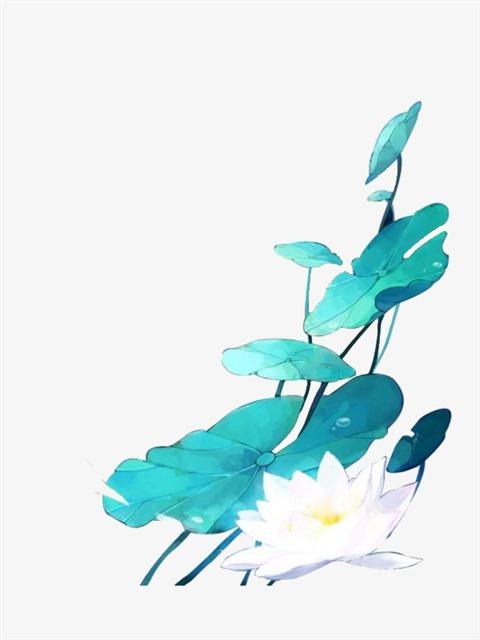 水彩手绘莲花