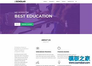 紫色教育平台响应式企业官网整站模板