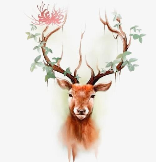 唯美圣诞节驯鹿图片