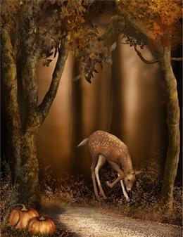 林深时见鹿壁纸