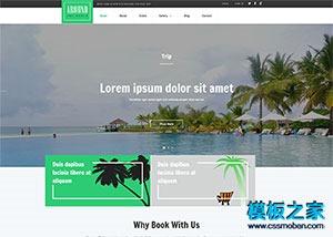 沙滩海岛旅游网站模板