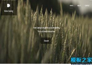 影片目录摄影博客网站模板