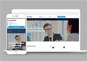 市场咨询机构引导式网站模板