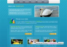 蓝色海洋企业网站模板