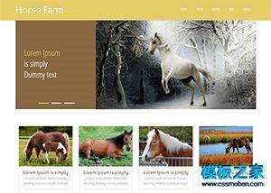 棕色动物宠物企业网站模板
