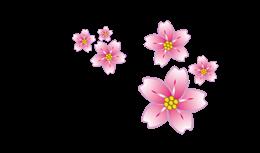 粉色漂浮樱花矢量贴图