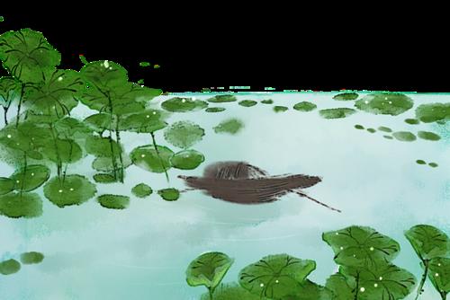池塘荷叶泛舟