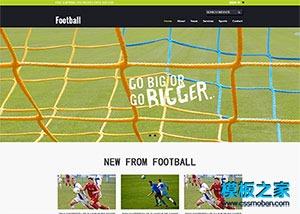 足球运动网站模板