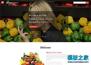 绿色蔬菜水果直销网网页模板