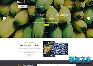 水果直销响应式网站模板