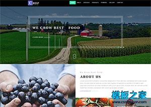 农业公司响应式网站模板